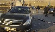 Gánh nặng đè lên vai Iran: Trả thù hay không?