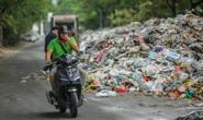 Rác thải xâm lấn môi trường sống