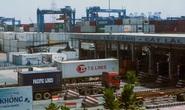 Nghị viện châu Âu chính thức phê chuẩn EVFTA