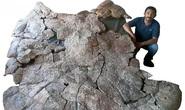 Choáng váng thủy quái bọc thép 10 triệu tuổi xuất hiện giữa sa mạc