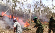 Nguy cơ cháy rừng uy hiếp nhiều tỉnh