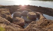 Chăn bò, tình cờ lọt vào hầm mộ quái vật 20.000 tuổi