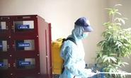 Tăng mạnh giá dịch vụ phun xịt khử trùng nhà cửa vì virus corona