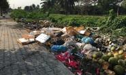 Kinh khủng bãi rác tự phát ở quận Bình Tân - TP HCM