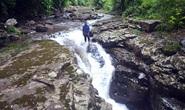 Điều gì tại khu rừng thiêng 300ha ở Quảng Ninh khiến lâm tặc sợ đến khiếp vía?