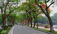 Con đường thanh xuân