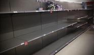 Covid-19: Bị cướp giấy vệ sinh ở Anh, khóc ròng vì ôm 17.700 chai thuốc khử trùng ở Mỹ