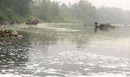 Điều tra nguyên nhân cá chết hàng loạt trên sông Chu