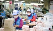 Bộ trưởng Trần Tuấn Anh nói về việc Mỹ và EU ngừng nhập hàng dệt may Việt Nam