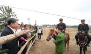Bộ trưởng Tô Lâm: Việc ra mắt lực lượng Kỵ binh CSCĐ thời gian tới rất cần thiết