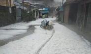 Mưa đá rơi trắng trời, trắng đất ở Lai Châu