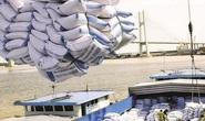 Bộ Công Thương đề xuất cho phép xuất khẩu nếp, không tính vào hạn ngạch 400.000 tấn