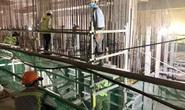 Đồng Nai: Cần 33.000 LĐ để xây dựng sân bay Long Thành