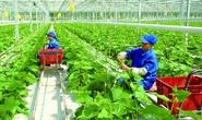 Những chính sách lao động nông nghiệp của Đài Loan cần lưu ý
