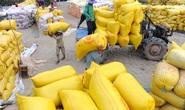 Nhiều doanh nghiệp không ký hợp đồng, gạo dự trữ quốc gia mới mua được 7.700 tấn