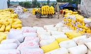 Tổng Cục Hải quan tố Bộ Công Thương phớt lờ góp ý về xuất khẩu gạo