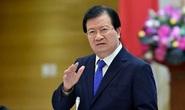 Hải quan mở tờ khai xuất khẩu gạo lúc nửa đêm, Phó Thủ tướng yêu cầu 2 Bộ báo cáo
