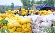 Cục An ninh Kinh tế tổng hợp, Bộ Công an tham gia đoàn kiểm tra về xuất khẩu gạo