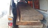 Vụ chủ tịch xã bắt gỗ lậu... biếu cán bộ: Yêu cầu khởi tố