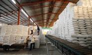 Xuất khẩu gạo phải bảo đảm an ninh lương thực