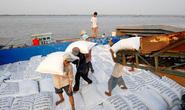 Thanh tra Chính phủ ban hành quyết định thanh tra việc xuất khẩu gạo