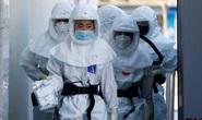 Covid-19 ở Hàn Quốc: Người tái dương tính  ít khả năng lây nhiễm
