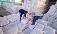 Thủ tướng: Không để tình trạng tay không bắt giặc trong xuất khẩu gạo