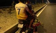 Vụ trộm hoa trên QL ngàn tỉ: Chủ tịch tỉnh Bình Định yêu cầu xử lý nghiêm!