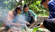 Du lịch Việt bật dậy sau covid-19 : Sôi động đồng bằng