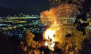Đà Nẵng: Cháy đỉnh núi Sọ, lực lượng chức năng khó tiếp cận
