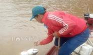 Tận mắt thấy cá măng khủng theo tay cao thủ rời... mặt nước!