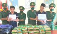 Bắt 2 thanh niên từ Hà Nam, Hải Phòng vào An Giang vận chuyển 40kg ma túy đá