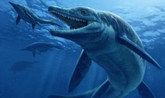 Quái vật trong quái vật ngư long 246 triệu tuổi hiện hình trên núi đá