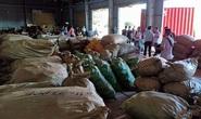 Đà Nẵng: Hơn 103 tấn dược liệu từ Trung Quốc đội lốt củ quả sấy khô cập cảng Tiên Sa