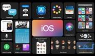 Apple ra mắt iOS 14: Giao diện tối ưu hơn, thêm tính năng cho Siri, iMessage, Maps