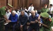 Ông Trần Phương Bình trần tình trước tòa: Đâm lao nên phải theo lao