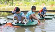 Công viên Du lịch Yang Bay đã mở cửa đón khách trở lại