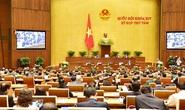 Quốc hội họp tập trung, thảo luận nhiều vấn đề