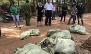 Đồng Nai: Phát hiện công ty chôn lấp chất thải nguy hại trái phép
