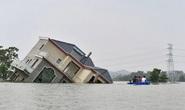 Trung Quốc lo sợ tái diễn thảm họa lũ lụt Thiên nga đen