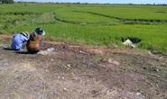 Phát hiện người đàn ông tử vong dưới ruộng lúa với nhiều nghi vấn