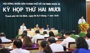 Kỳ họp thứ 20 HĐND TP HCM khóa IX: Thảo luận nhiều vấn đề quan trọng