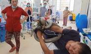 Người đàn ông ôm con rắn hổ mang chúa 4,5 kg vào bệnh viện
