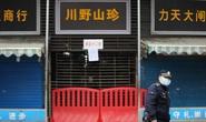 Tình báo Mỹ: Quan chức địa phương Trung Quốc giấu dịch Covid-19