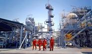 Hơn 1.000 vị trí việc làm trong lĩnh vực lọc dầu, nhiệt điện