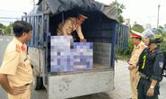 Tân giám đốc công an tỉnh chỉ đạo phục kích bắt hàng loạt xe tải chở hàng lậu