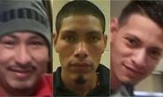 Mỹ: Ba anh em cưỡng hiếp tập thể bé gái 10 tuổi