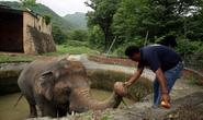 """Con voi cô đơn nhất thế giới"""" được giải cứu"""