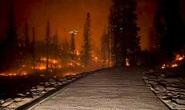 Thời tiết Mỹ thất thường chưa từng thấy, California phải cúp điện luân phiên