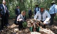 UBND TP HCM xin ý kiến Bộ Quốc phòng về Di tích lịch sử địa đạo Củ Chi
